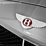 bentley-gt-v8-coupe-badge