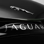 jaguar_xkx_concept_car_badge
