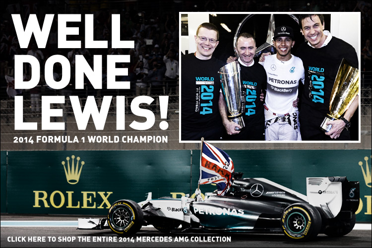 lewis-hamilton-f1-world-champion
