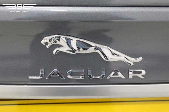 JaguarXF-15
